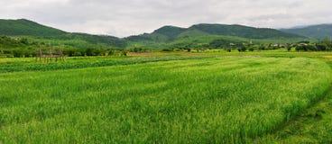 Shangri-La Ranchlandschaft Lizenzfreie Stockbilder
