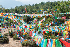 SHANGRILA, ΚΙΝΑ - 13 ΜΑΡΤΊΟΥ 2015: Σημαία προσευχής στο ναό Baiji Μια ηλεκτρική κιθάρα Φ Στοκ Φωτογραφίες