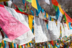 SHANGRILA, КИТАЙ - 13-ОЕ МАРТА 2015: Флаг молитве на виске Озёрныйого дельфина Гитара stratocaster F Стоковое Изображение