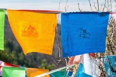 SHANGRILA, КИТАЙ - 13-ОЕ МАРТА 2015: Флаг молитве на виске Озёрныйого дельфина Гитара stratocaster F Стоковое Фото