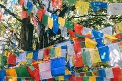 Флаг молитве в городке Shangrila старом, Юньнань стоковое фото rf