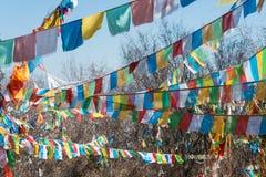 SHANGRILA, CHINA - 13 DE MARÇO DE 2015: Bandeira da oração no templo de Baiji Uma guitarra elétrica do stratocaster do F Foto de Stock Royalty Free