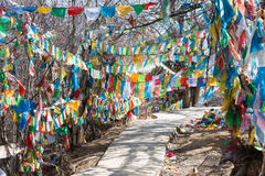 SHANGRILA, CHINA - 13 DE MARÇO DE 2015: Bandeira da oração no templo de Baiji Uma guitarra elétrica do stratocaster do F Fotografia de Stock