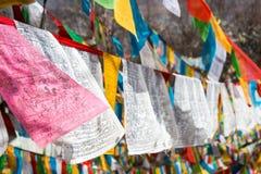 SHANGRILA, CHINA - 13 DE MARÇO DE 2015: Bandeira da oração no templo de Baiji Uma guitarra elétrica do stratocaster do F Imagem de Stock