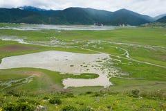 SHANGRILA CHINY, Jul, - 31 2014: Napa jezioro sławny krajobraz wewnątrz Zdjęcia Stock