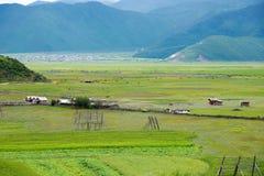 SHANGRILA CHINY, Jul, - 31 2014: Napa jezioro sławny krajobraz wewnątrz Zdjęcie Stock
