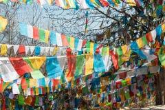 SHANGRILA, CINA - 13 MARZO 2015: Bandiera di preghiera al tempio di Baiji Una chitarra elettrica dello stratocaster del F Immagini Stock