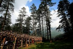 shangrila, Lijiang, Yunnan, China Imagem de Stock