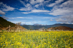 Shangrila, Yunnan, China and the place nearby. June 2015 stock image