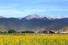 Shangrila, Yunnan, China and the place nearby. June 2015 stock photo