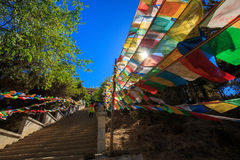 Shangrila, Yunnan, Chiny i miejsce w pobliżu, Zdjęcie Stock
