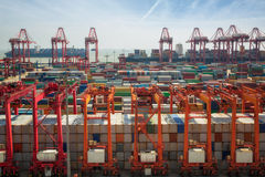 Shanhai tranfer container box to Singapore hub. China, Shanghai harber container box, for lojistic, transportation, delivery and import and export job, Shanhai Royalty Free Stock Photo