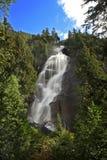 Shannon faller vattenfallet arkivbilder