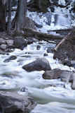Shannon Falls Creek Stock Image