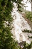 Shannon Falls nära Squamish, omges F. KR. som av träd Arkivfoton