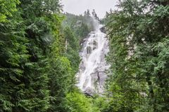 Shannon Falls near Squamish, BC, surrounded by trees. Stock Image