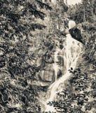 Shannon Falls Provincial Park, Squamish, Canadá imagem de stock