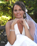 Shannon Flower. Young bride looking over bouquet Stock Images