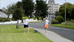 Shannon, Ireland - Sept 5, 2015: Couple walking their dog and following the law by cleaning up after their dog poop with a poop sc stock video footage