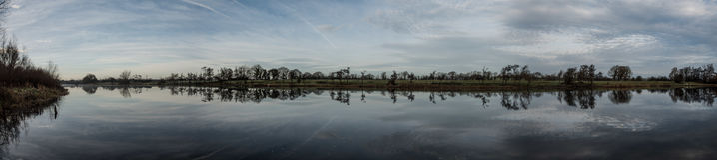 Shannon River 11-12-1016 Arkivfoton