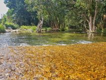 Shannonvale. Swimming hole near mossman stock image