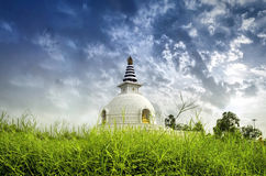 Shanti stupa和平寺庙新德里印度 免版税库存图片