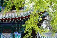 Shaolin świątynia w Songshan Zdjęcie Stock