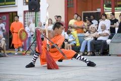 shaolin 15 fu kung Στοκ φωτογραφία με δικαίωμα ελεύθερης χρήσης