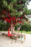 Shaolin kloster Royaltyfri Fotografi