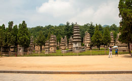 Shaolin klosterskog av pagoden Royaltyfri Bild