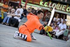 Shaolin Kung Fu 1 Royalty Free Stock Photos