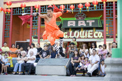 Shaolin Kung Fu 3 Imagen de archivo libre de regalías