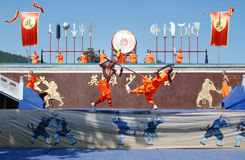 Shaolin Kung fu Στοκ εικόνα με δικαίωμα ελεύθερης χρήσης