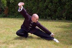 Shaolin Kung Fu Position Lizenzfreie Stockfotos