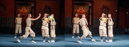 Shaolin monasteru przedstawienie Obraz Stock