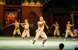 Shaolin monasteru przedstawienie Fotografia Royalty Free