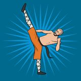 Shaolin monk practicing kung fu. Martial art. Vector illustration, isolated on blue. royalty free illustration