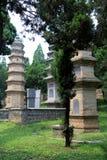Shaolin tempel, födelseorten av Shaolin Kung Fu Royaltyfri Bild