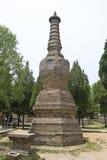 Shaolin temple tallinn Stock Photos