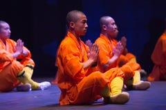 Shaolins Obrazy Stock
