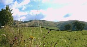 Shap Powalać, Cumbria zdjęcie wideo