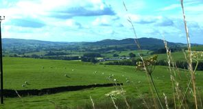Shap Valley, Cumbria stock video footage