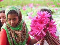 Shapala dziewczyna zdjęcia stock