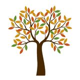 Shape of Autumn Tree with color Leaves. Vector Illustration. vector illustration