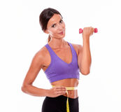 In shape brunette woman lifting weight. In shape woman lifting weight, looking at camera and smiling, while measuring her waist and wearing violet and black Royalty Free Stock Images