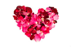 Shape of heart from petal rose Royalty Free Stock Image