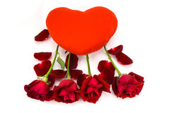 Shape heart and red roses on a white background . Royalty Free Stock Images