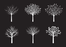 Shape of White Trees. Vector Illustration. Royalty Free Stock Photos