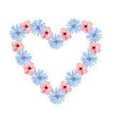 Shaped hollow heart composed of chicory and hibiscus flowers, is Royalty Free Stock Photos