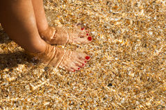 Shapely женские ноги закрывают вверх Стоковые Фото